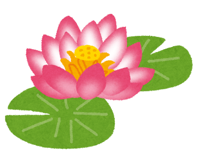 flower_hasu.png